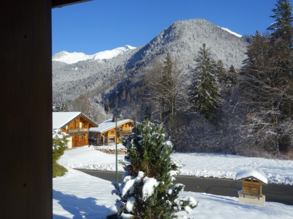View from the outside of Essert Romand Detached Chalet - Near Morzine