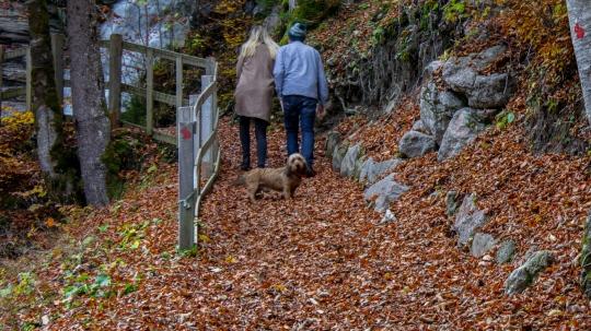 Leggett Immobilier - Property in Morzine:Les Gets 27