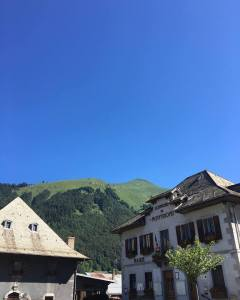 Montriond in Summertime - Property with Leggett Immobilier